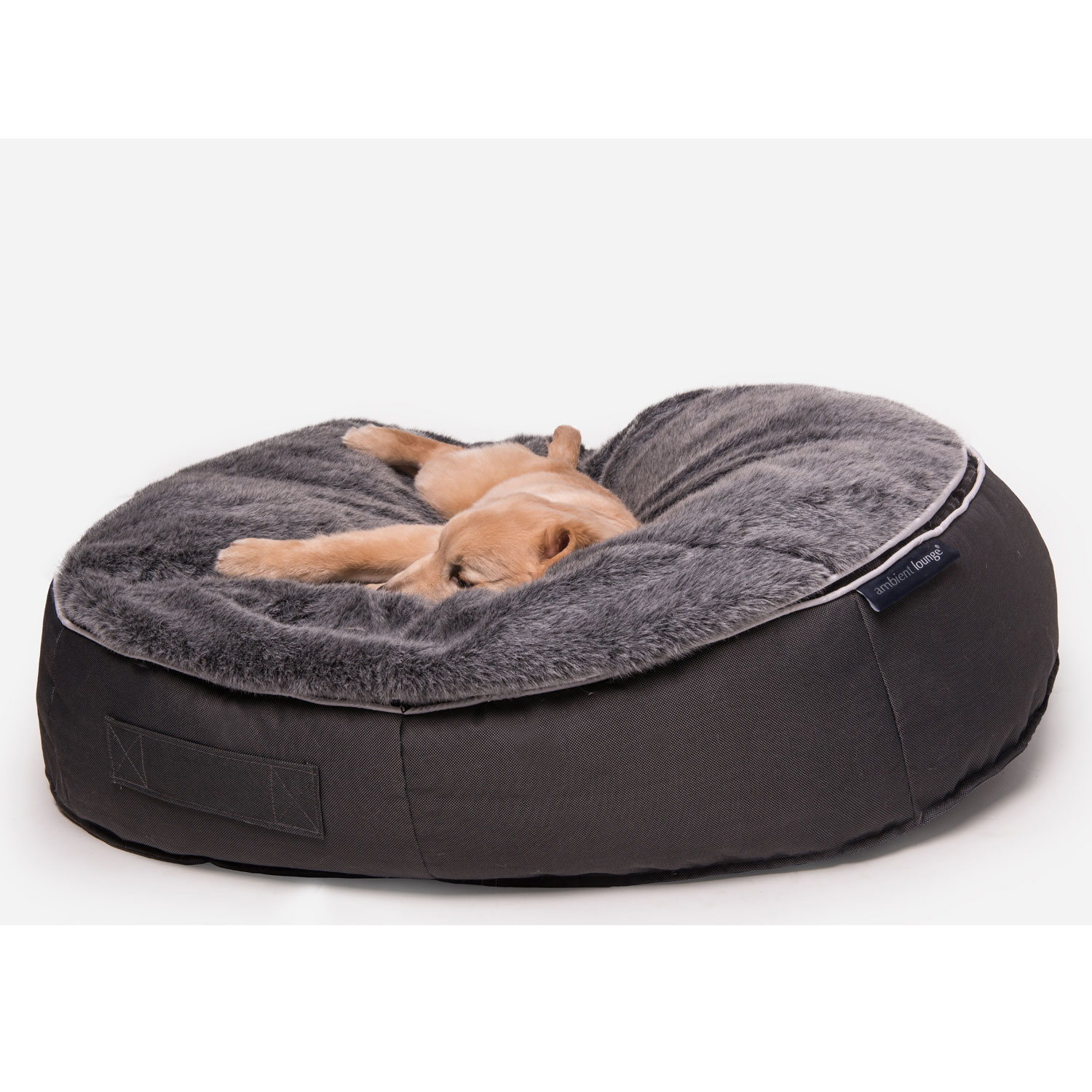 pet beds  dog beds  designer dog bean bags  medium size -  black cushion dog beds made of bean bags by ambient lounge