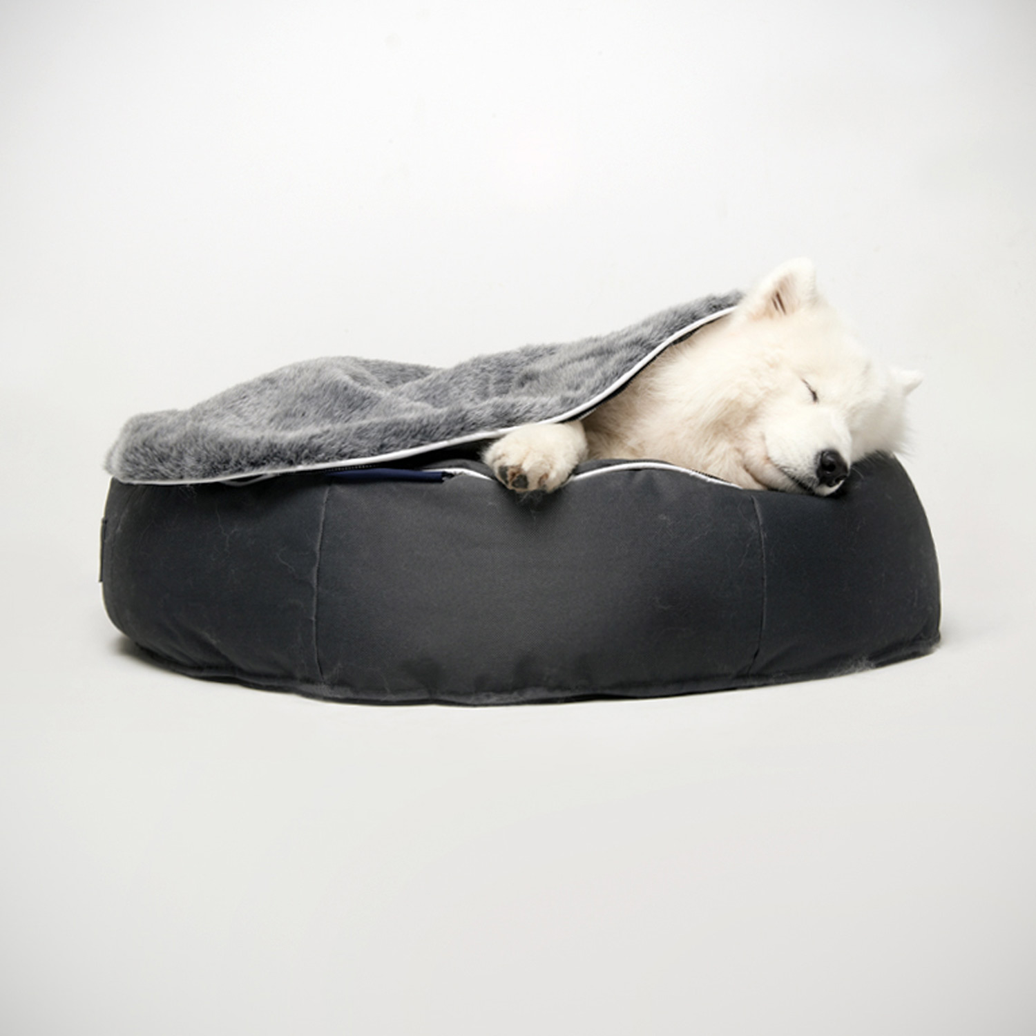 Designer Dog Couch Covers