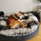 brown cushion dog beds made of bean bags by Ambient Lounge
