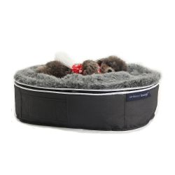 small dog bed filled with bean bags in australia cute dog melbourne